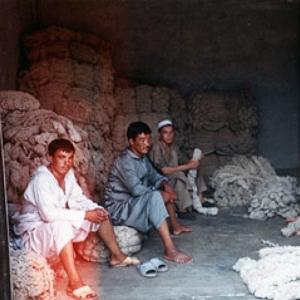 Fonal készítők